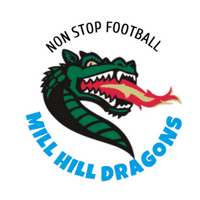 Mill Hill Dragons