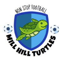 Mill Hill Turtles